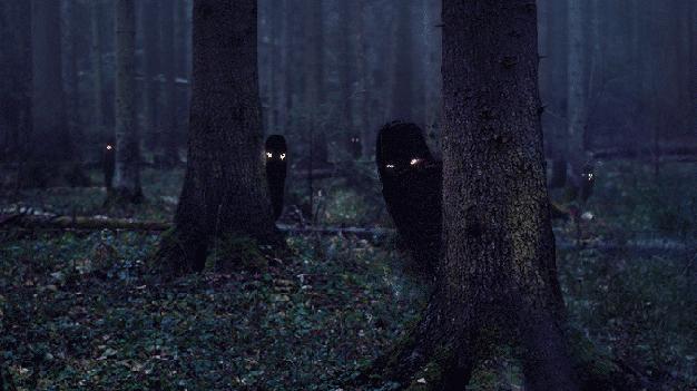 bosques terror actividad paranormal 2